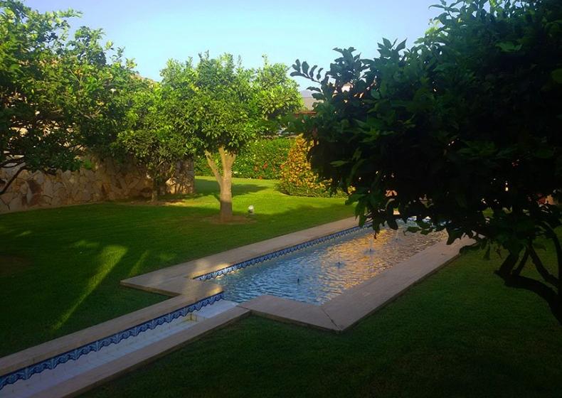 piante-esotiche-Hotel-Lantana-Pula.jpg